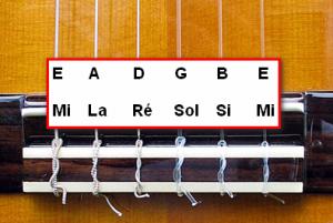 Noms des cordes de la guitare
