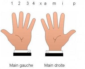 Noms des doigts pour l'apprentissage de la guitare